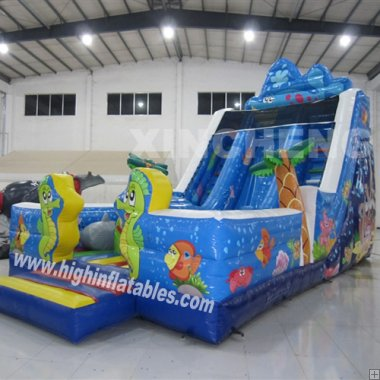 Inflatable sea Slide